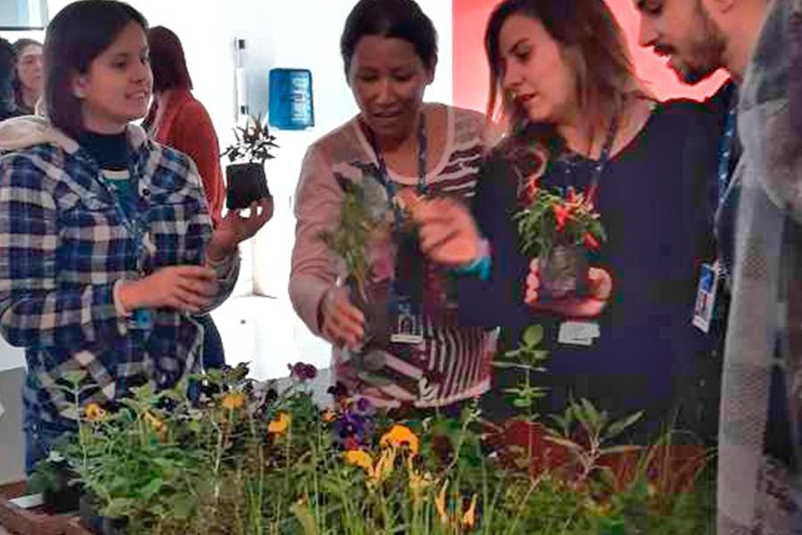 Imagem 9 - Semana do Meio Ambiente promove atividades de conscientização